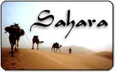 Sahara calling card